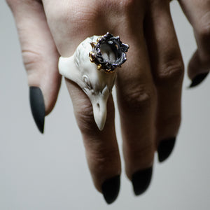 CORAX RING - WHITE