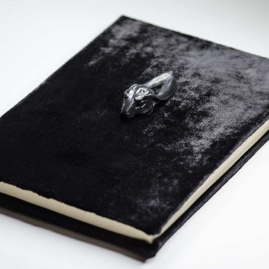 BLACK LEPORIDAE NOTEBOOK