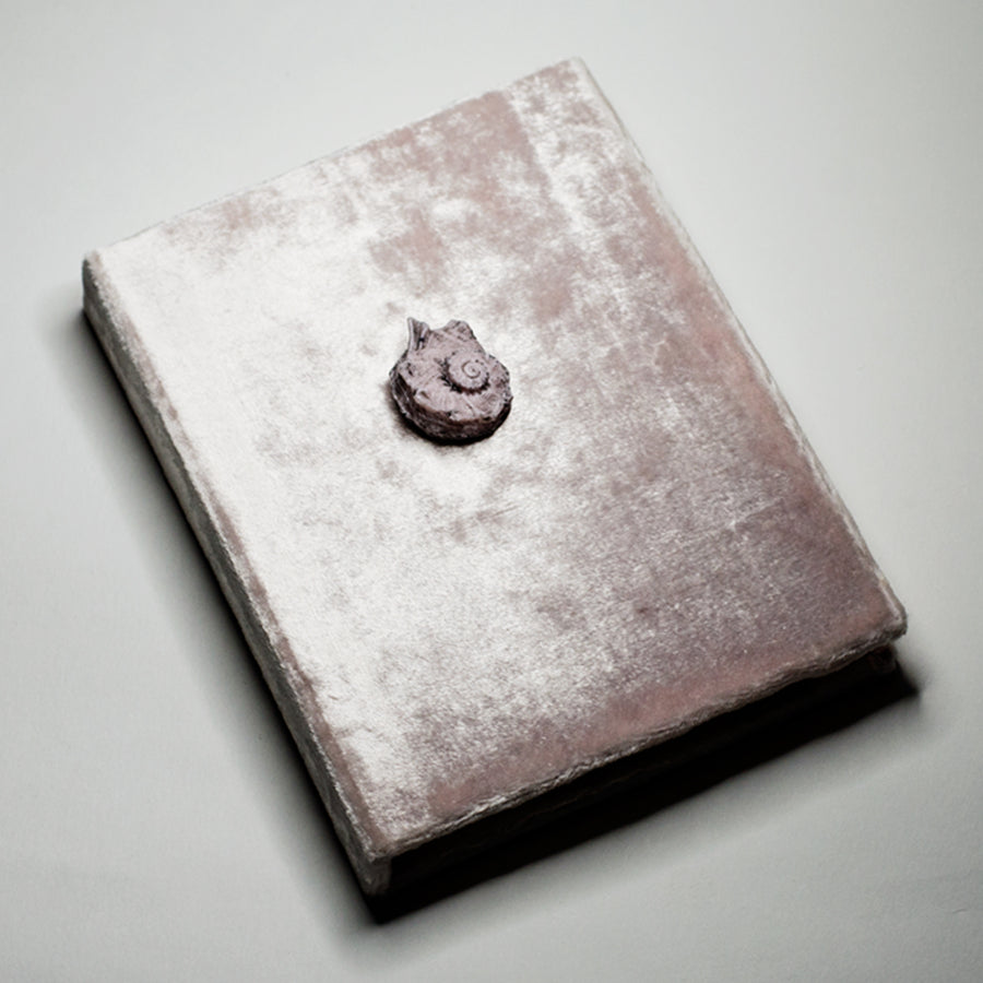 SHELL NOTEBOOK