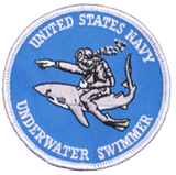 U.S. Navy UWSS Patch