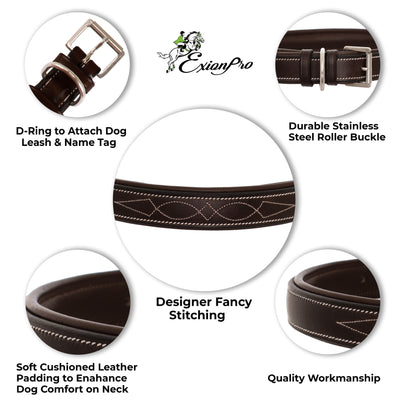 ExionPro Fancy Stitched Padded Leather Dog Collar - Oak Brown Padding-Bridles & Reins