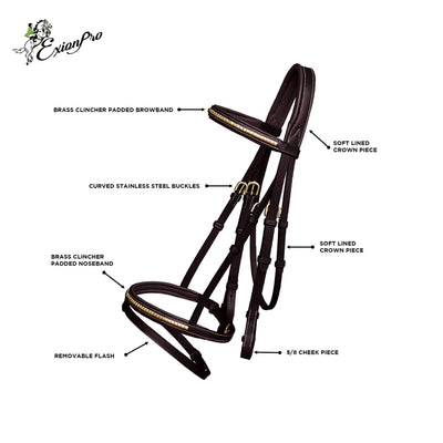 ExionPro Brass Clincher Studded Bridle With Flash and Reins-Bridles & Reins
