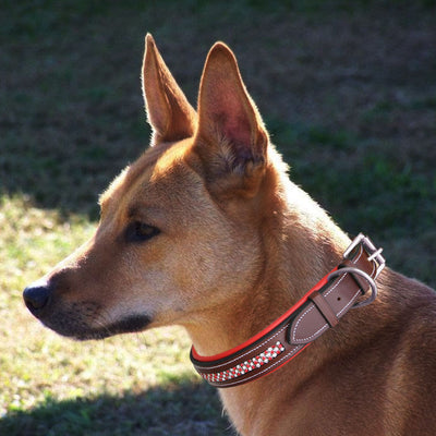 ExionPro Red Bling Padded Dog Collar-Bridles & Reins