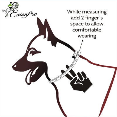 ExionPro Black Bling Dog Collar With Lead-Bridles & Reins
