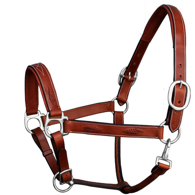 ExionPro Fancy Braided Padded Leather Halter-Brass Nickel Buckles-Bridles & Reins