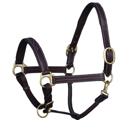 ExionPro Triple Stitched Cheek & Designer Fancy Padded Leather Halter-Brass Buckles-Bridles & Reins