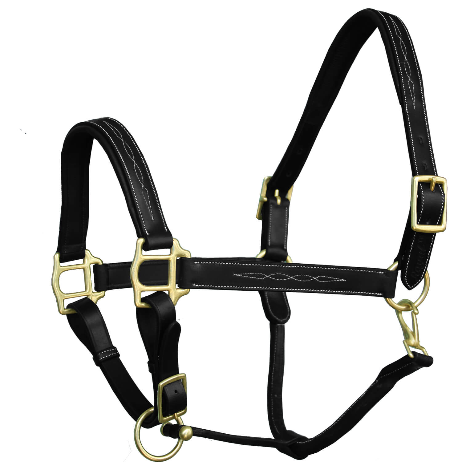 ExionPro Six Fancy Padded Halter.| Brass Buckles.