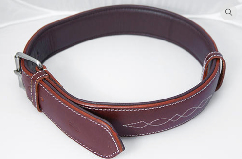 ExionPro Fancy Padded Leather Dog Collar-Dog Collars from Bridles & Reins