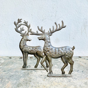 Pair of Reindeer