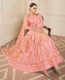 Light Pink Designer Embroidered Georgette Anarkali Suit-Saira's Boutique