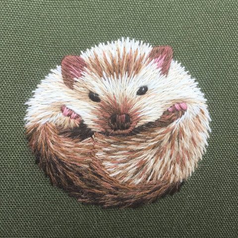 'Hibernating Hedgehog' Crewelwork Embroidery Kit