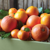 15 pound box of citrus