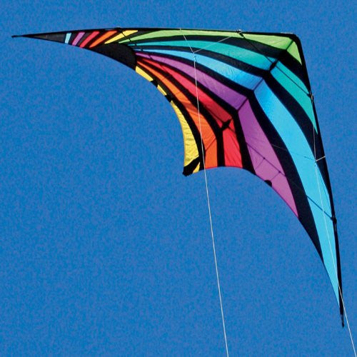 Dream On Dual Line Stunt Kite with Line & Wrist Straps