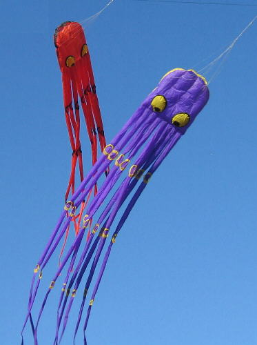 Giant Inflatable Octopus Kite