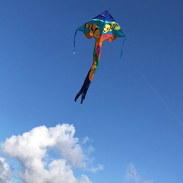 Clownfish Fly-Hi Delta Kite with Line Included