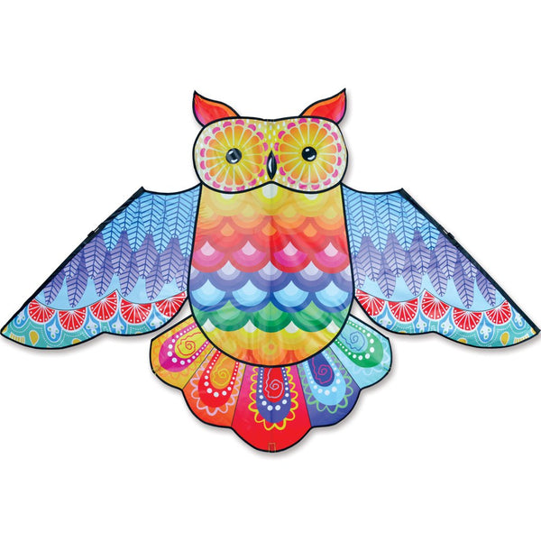 70 Inch Rainbow Owl Kite with Flying Line & Handle