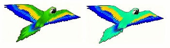 3D Macaw Kite with Line Included