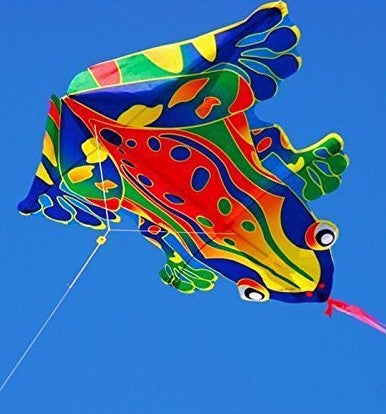 Mini Frog Kite with Line Included