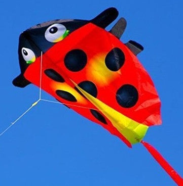 Mini Ladybug Kite with Line Included