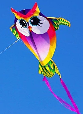 Mini Owl Kite with Line Included