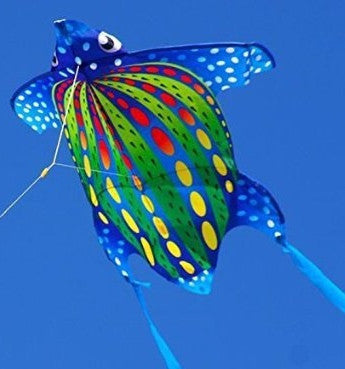 Mini Turtle Kite with Line Included