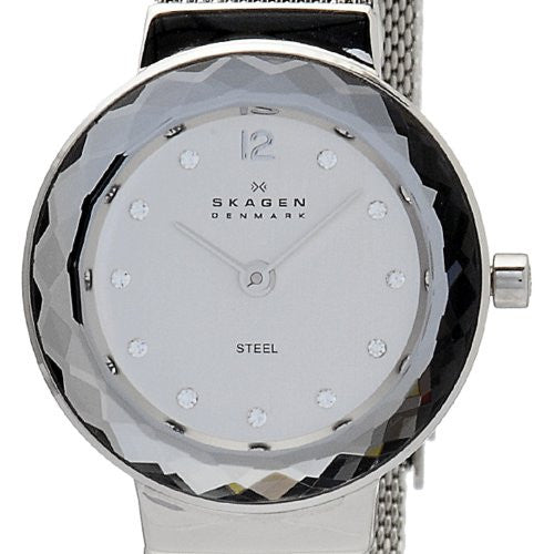 SKA456SSS Skagen Watch