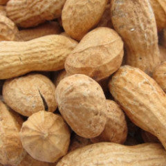 Peanuts ROASTED IN SHELL