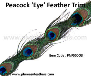 Peacock 'Eye' Feather Trim II