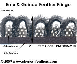 Emu & Guinea Feather Fringe