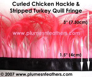 Stripped Curled Coque Hackle Turkey Fringe