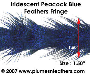 Peacock Blue Plumage Trim