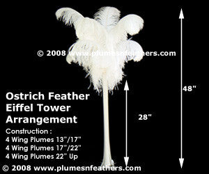 Ostrich Feather 12 Pc. Arrangement