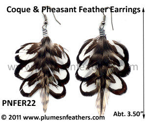 Feather Earrings PNFER22