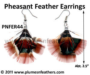 Feather Earrings PNFER44