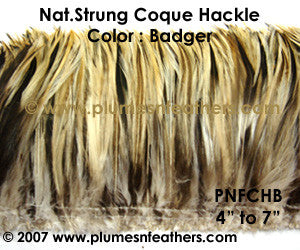 "Natural Strung Badger Hackle Feathers +4"" ½ Oz."
