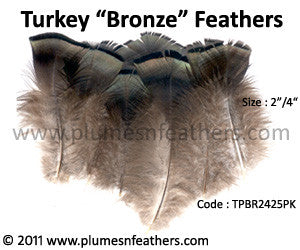"Turkey Bronze Plumage 2""/4"" 25 Pcs."
