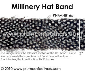 Hat Band '16a'