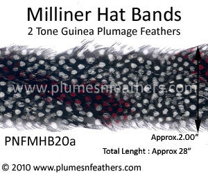 Hat Band '20a'