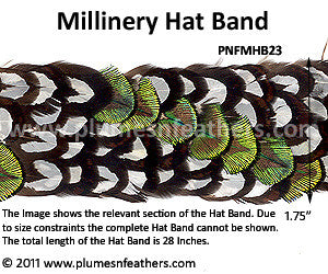 Hat Band '23'