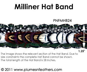 Hat Band '24'
