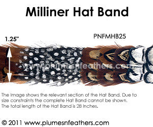 Hat Band '25'