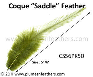 "Bleached White Or Dyed Loose Saddle Feathers +5"" 50Pcs"