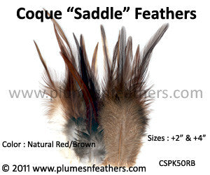 "Natural Red Brown Loose Saddle Feathers +2"" 50Pcs."