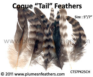 "Grey Chinchilla Loose Coque Tail Feathers 5""/7"" 25Pcs."