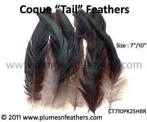 "Half Bronze Loose Coque Tail Feathers 7""/10"" 25Pcs."