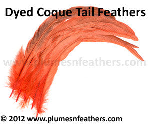 "Coque Tail Bleached Dyed 14""/16"" 10 Pcs."