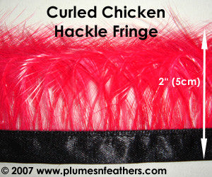 Coque Hackle Curled Fringe