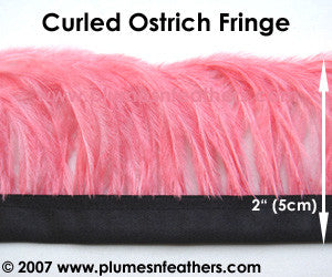 Ostrich Feather Fringe Curled