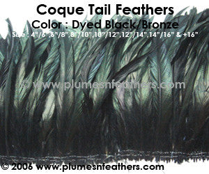 "Dyed Black Strung Coque Tails 4""/6"" ½ Oz. Pack"