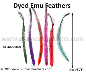"Emu Feather Hair Extensions Dyed 6""/8"" 20 Pc."